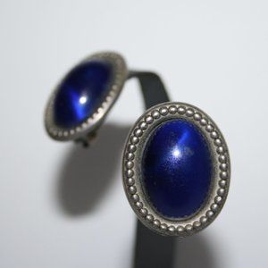 Beautiful silver and blue clip on earrings